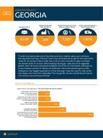 Georgia Factsheet 2014
