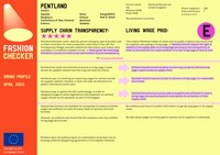 Pentland.pdf