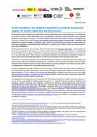 Principal Elements of an EU mandatory Human Rights Due Diligence legislation