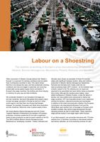 Labour on a shoestring - factsheet